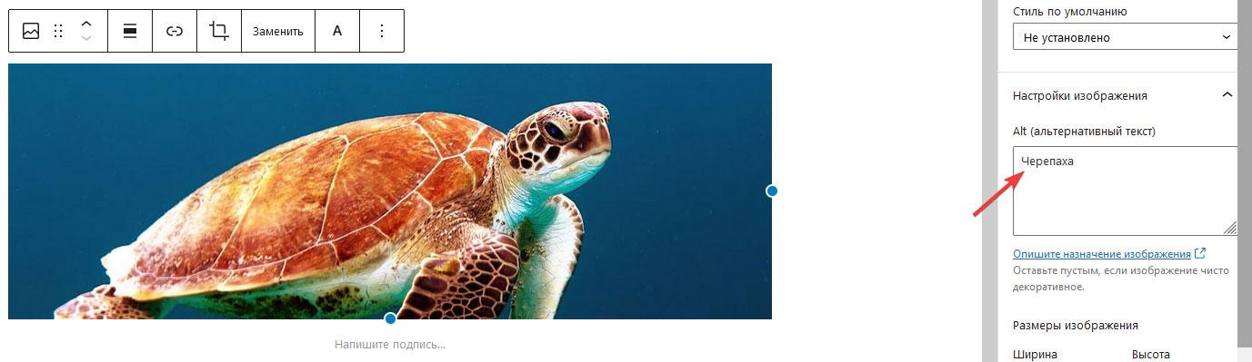 Загрузка изображения в блоке Изображение